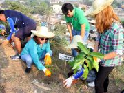 Tree planting Payatas