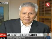 Albert del Rosario