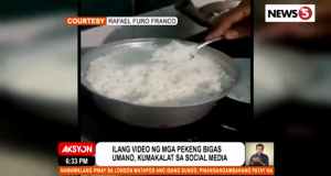 Video fake rice