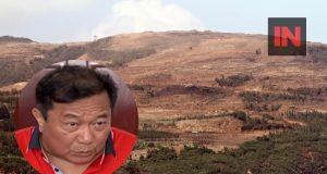 HInatuan mining Alvarez inset