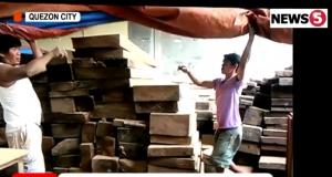 Illegal lumber QC warehouse