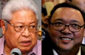 Edcel_Lagman_Harry_Roque_twosome_composite