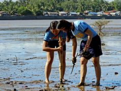 Butuan_mangrove_planting_the_seedlings_ERWIN_MASCARINAS