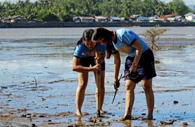 Butuan_mangrove_planting_the_seedlings_ERWIN_MASCARINAS