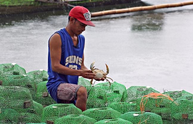 Lianga_red_tide_crabbing_Bgy_Liatimco_ERWIN_MASCARINAS