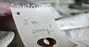 im sorry free image