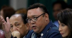 Spox_harry_roque_REU_file