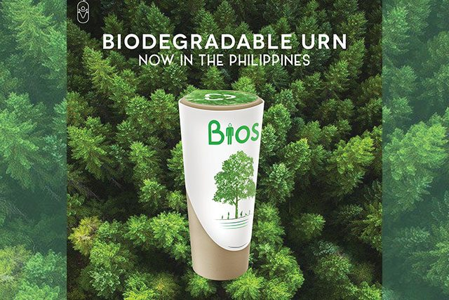 Biodegradable urn