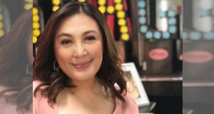 Sharon Cuneta separates politics and personal relationships
