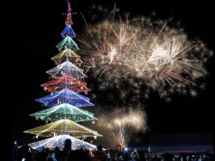 Tagum City Christmas Tree
