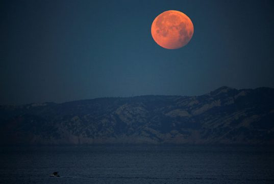 """The """"super blood wolf moon"""""""