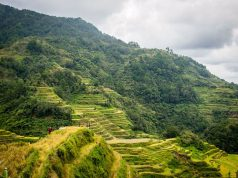 Banaue Rice Terraces Pixabay