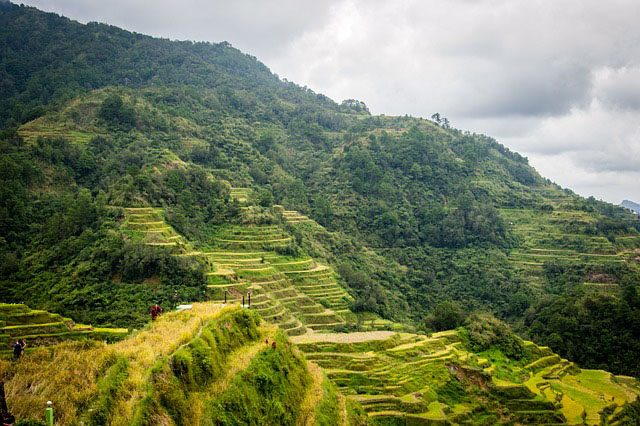 Banaue Rice Terraces Pixabay
