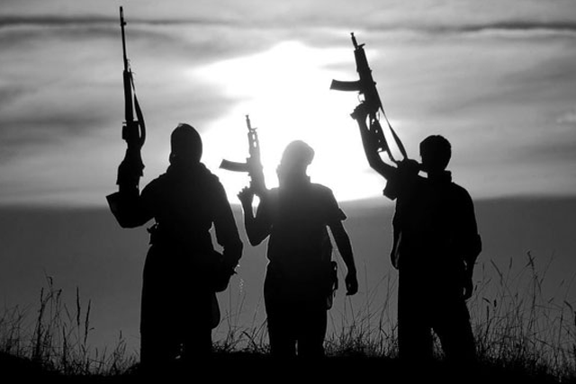 Militants in the shadow