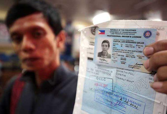 Motorist holding driver's license