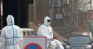 Swine flu outbreak