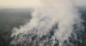 An aerial view of a tract of the Amazon jungle burning as it is being cleared by loggers and farmers in Porto Velho