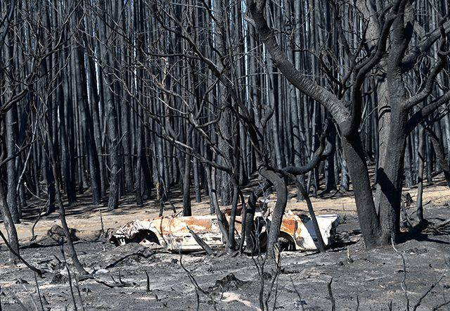 A general view of fire damage on Kangaroo Island