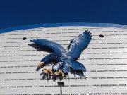 Ateneo Blue Eagle Gym