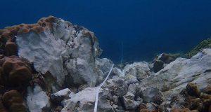 Sarangani Reefs