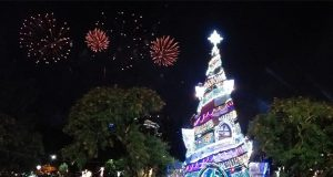 Christmas tree in Baguio