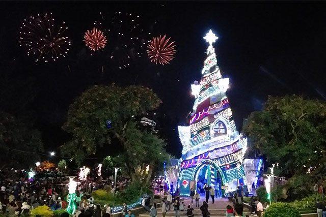 Christmas tree in Baguio