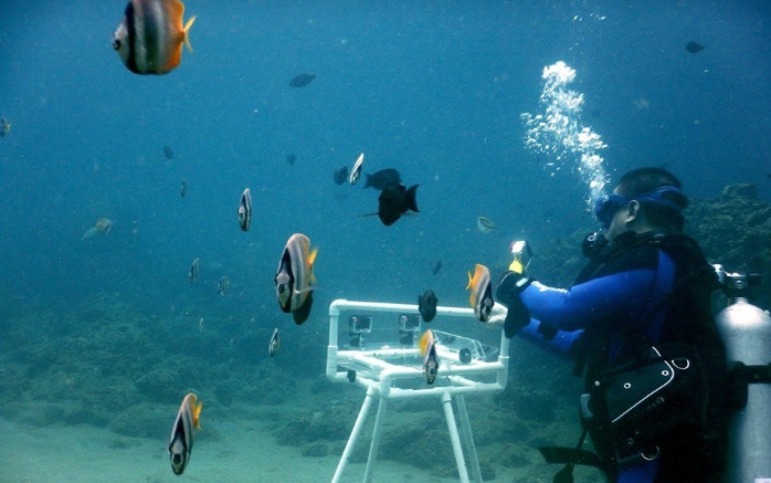 UP MSI FISH-I Technology
