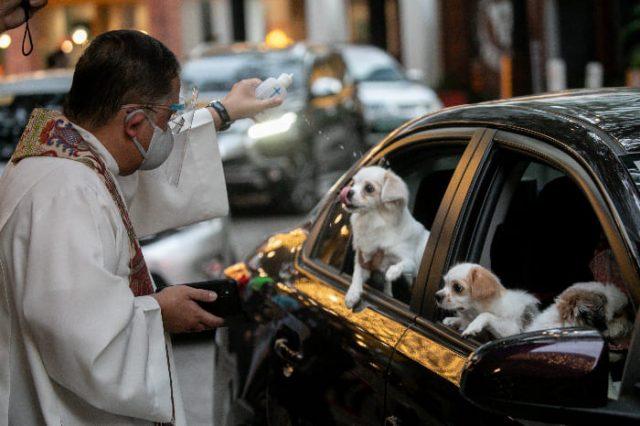 Drive-thru pet blessing